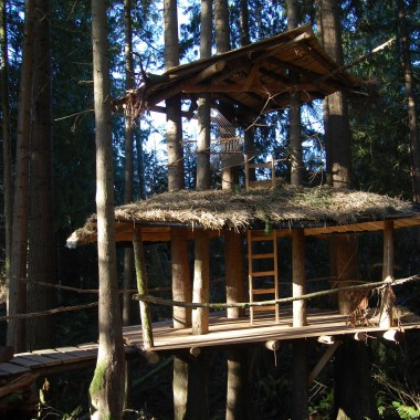 This treehouse sits above a stream. (Martha Kang/KPLU)