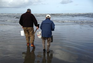 Steve Gray, who is in his seventies, and Toshio Inahara, who is in his nineties, have been digging for razor clams together for decades. (Rae Ellen Bichell/KPLU)