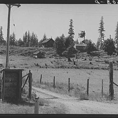 August 1939: Western Washington stump farm. The shelter at lower left is provided to protect children from the weather as they wait for the school bus. Washington, Lewis County, near Vader. (Dorothea Lange/Farm Security Administration)