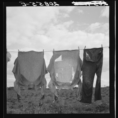 August, 1939: Detail on Kytta farm. Western Washington, Thurston County, Michigan Hill. (Dorothea Lange/Farm Security Administration)